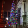 Providence Winter Lights Market & Tree Lighting Set for This Weekend