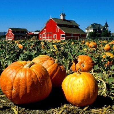 Confreda Farms Scituate Rhode Island