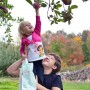 Apple picking is one of the best fall activities in New England