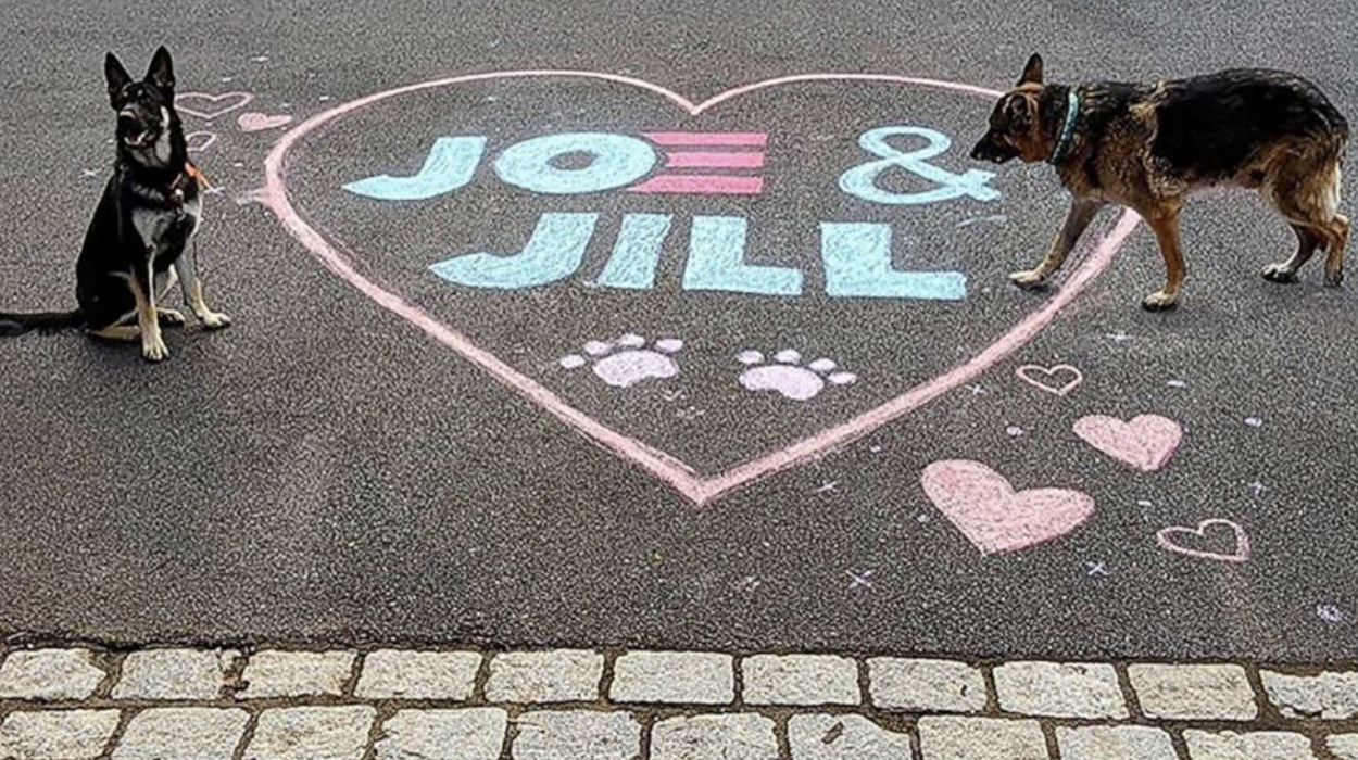 Major and Champ: Joe Biden's dogs moved out of White House